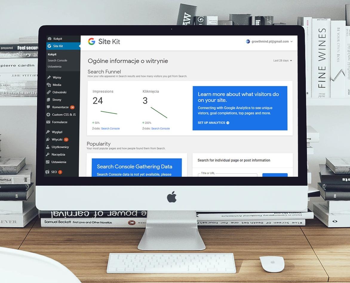 google-site-kit-alt-pl